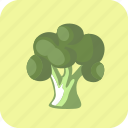 broccoli, food, vegetable icon
