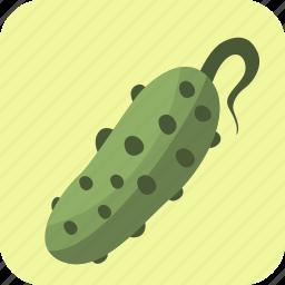 cucumber, food, vegetable icon