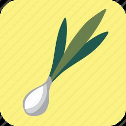 food, green, onion, scallion, vegetable icon