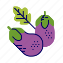 aubergine, food, greens, raw food, vegetables, veggie icon