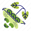 beans, food, greens, raw food, vegetables, veggie icon