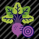 beetroot, food, greens, raw food, vegetables, veggie icon