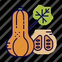 butternut, food, greens, raw food, squash, vegetables, veggie icon