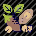 chickpeas, food, greens, raw food, vegetables, veggie icon