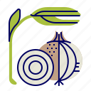food, greens, onion, raw food, vegetables, veggie icon