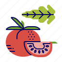 food, greens, raw food, tomato, vegetables, veggie icon