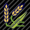 food, greens, raw food, vegetables, veggie, wheat icon