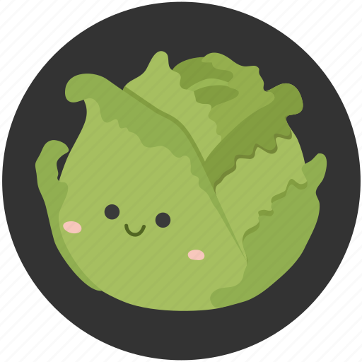 Cabbage icon in flat style view large photo image