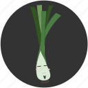 cartoon, food, ingredient, leek, vegetable, vegetarian icon