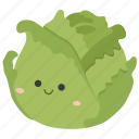 cabbage, food, ingredients, plant, vegetable icon