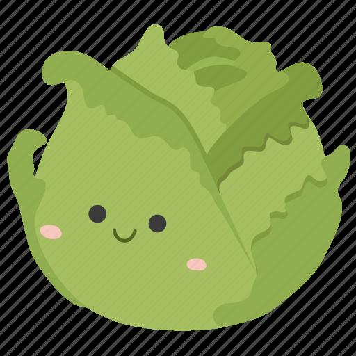cabbage, food, ingredients, plant, vegetable icon
