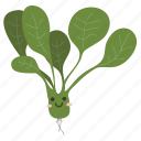 food, ingredients, plant, spinach, vegetable icon