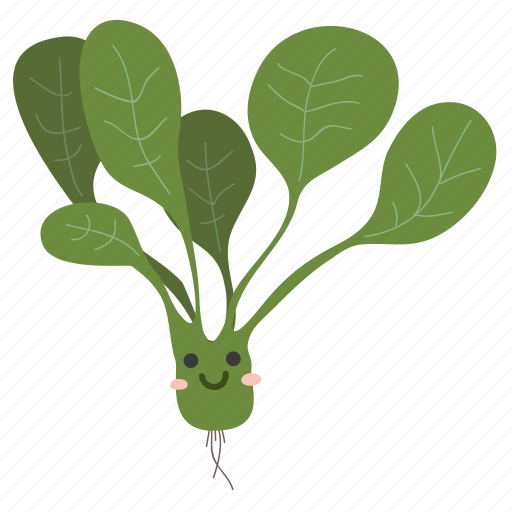 Food, ingredients, plant, spinach, vegetable icon - Download on Iconfinder