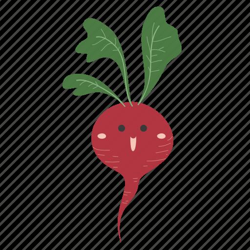 food, ingredients, plant, radish, vegetable icon