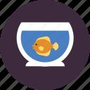 fish, fishbowl, fishtank, pet, veterinary, water