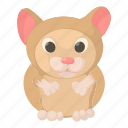 aid, cartoon, clinic, hamster, medicine, pet, vet icon