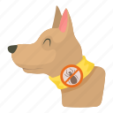 animal, bandage, breed, canine, care, cartoon, dog collar icon