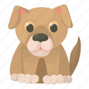 aid, cartoon, clinic, dog, medicine, pet, vet icon