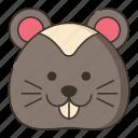 animal, hamster, pet