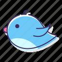 animal, bird, cute, fly