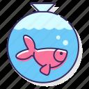 fish, gold, pet icon