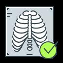 check, check mark, ray, rib, rib cage, x, x-ray icon
