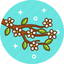 bloom, flower, sacura, spring, tree icon