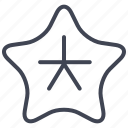 activities, fish, ocean, sea, star, water icon