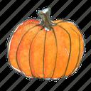 autumn, fall, halloween, harvest, pumpkin, squash, thanksgiving