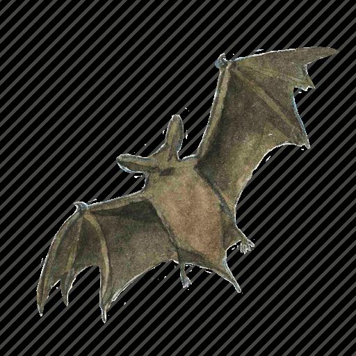 bat, flying, halloween, horror, night, scary, spooky, vampire icon