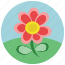 floral, flower, spring, weather icon