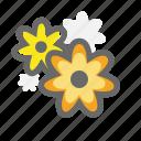flower, spring, warm icon