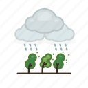 cloud, nature, plant, rain, rainy, weather