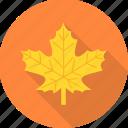 ecology, leaf, leaves, tree icon