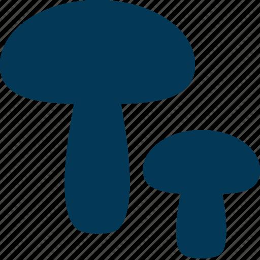 Fungi, fungus, mushroom, oyster mushroom, toadstool icon - Download on Iconfinder