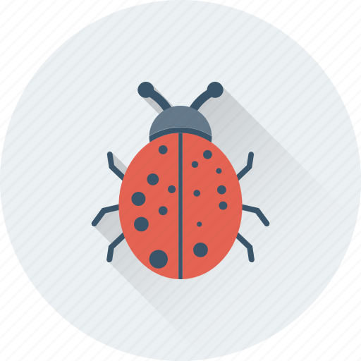 bug, ladybird, malware, threats, virus icon
