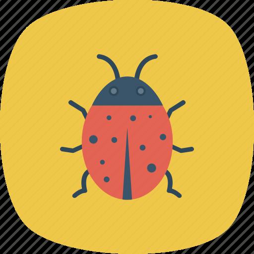 animal, bug, insect, virus icon