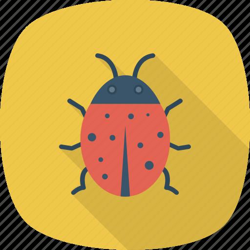 Virus, insect, animal, bug icon