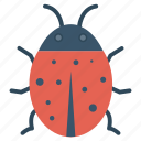 virus, insect, animal, bug icon