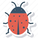 animal, bug, insect, virus icon