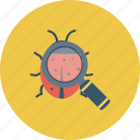 bug, bug search, bug tracking, find bug, testing, unit testing icon icon