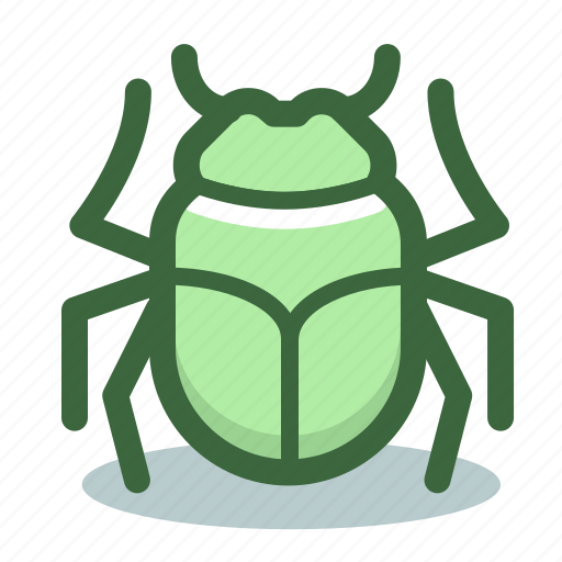 bug, development, error, internet, web icon