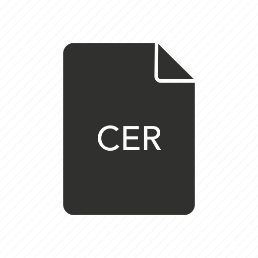 cer, cer file, certificate, website icon