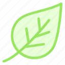green, leaf, life, planticon icon