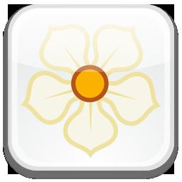 badge, magnolia icon