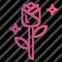blossom, botanical, flower, petals, rose icon