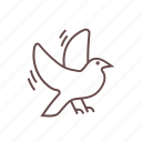 day, dove, love, romantic, valentine, valentines, wedding icon