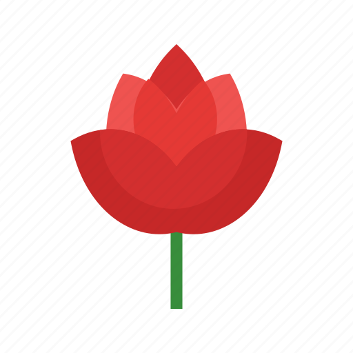 Beauty, flower, nature, red, rose, roses, single icon - Download on Iconfinder