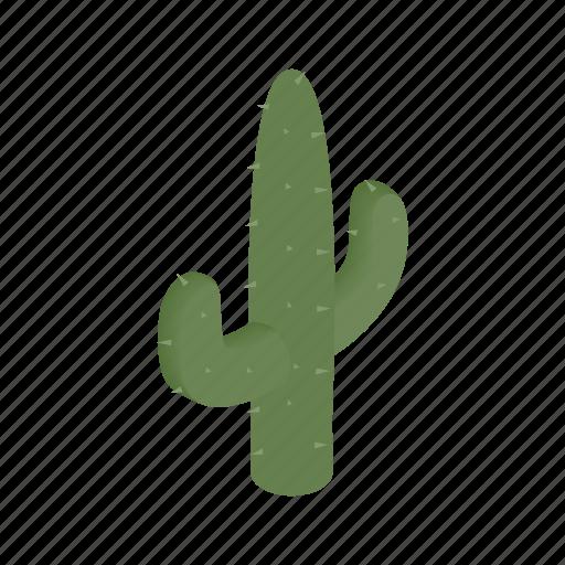 cactus, desert, dry, isometric, west, western, wild icon