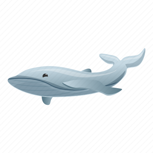 Animal, gray, grey, mammal, nature, whale icon - Download on Iconfinder